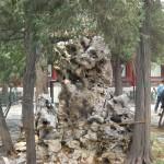 beijing_0142