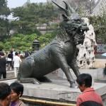 beijing_0221